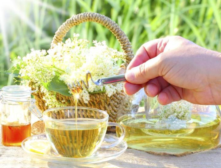 Elder blossom tea